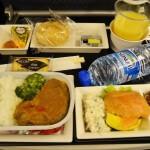 全日空(ヒースロー⇒成田)エコノミー搭乗記 2013年10月機内食#2